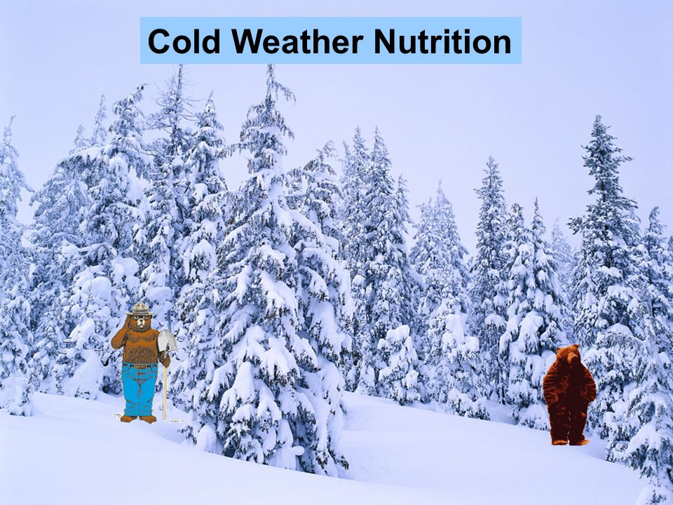 Cold Weather Nutrition