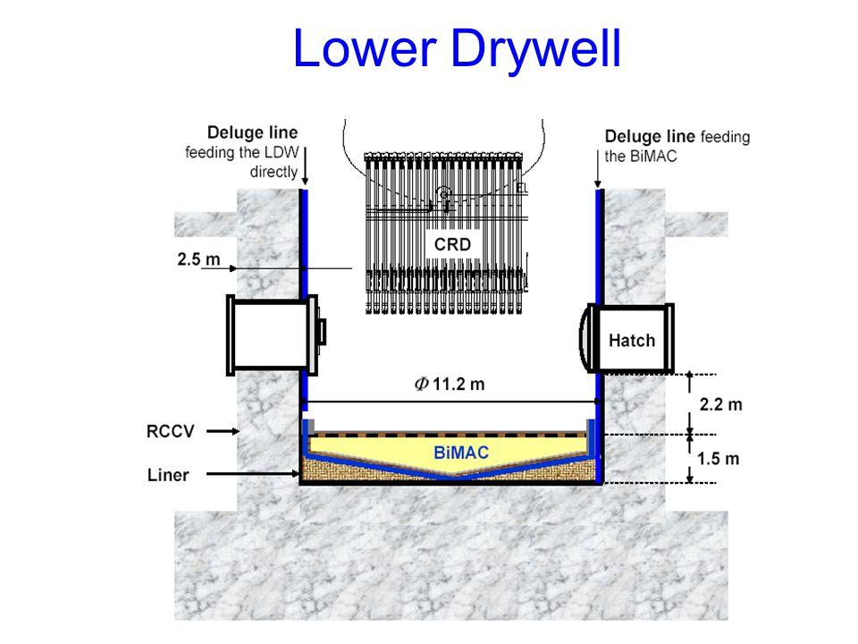 Lower Drywell
