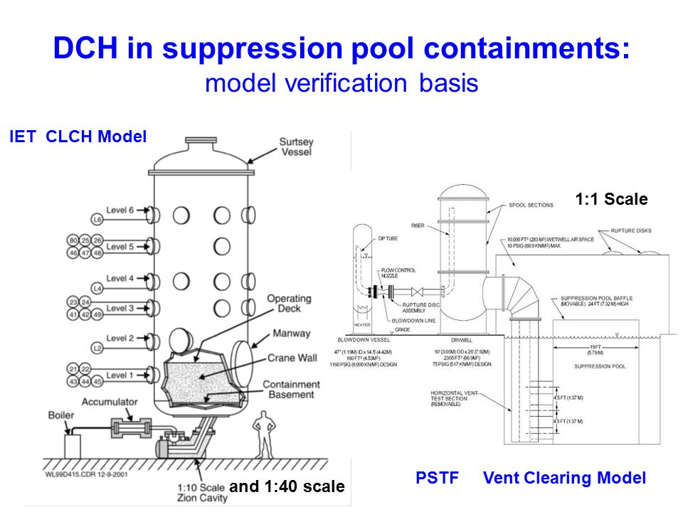 DCH in suppression pool containments: model verification basis
