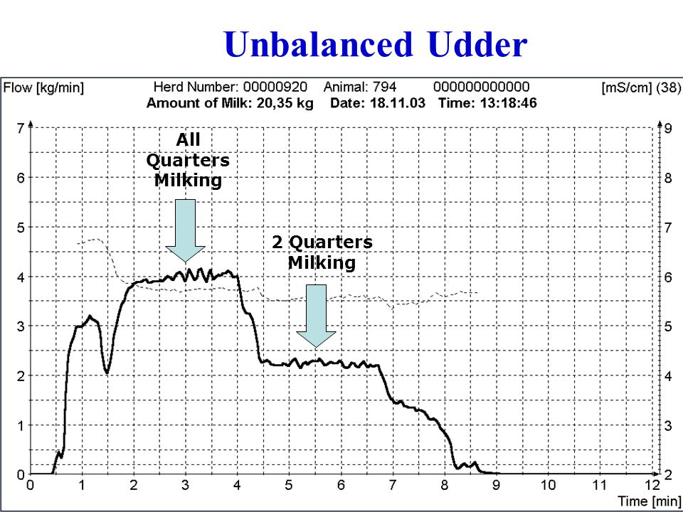 Unbalanced Udder All Quarters Milking 2 Quarters Milking