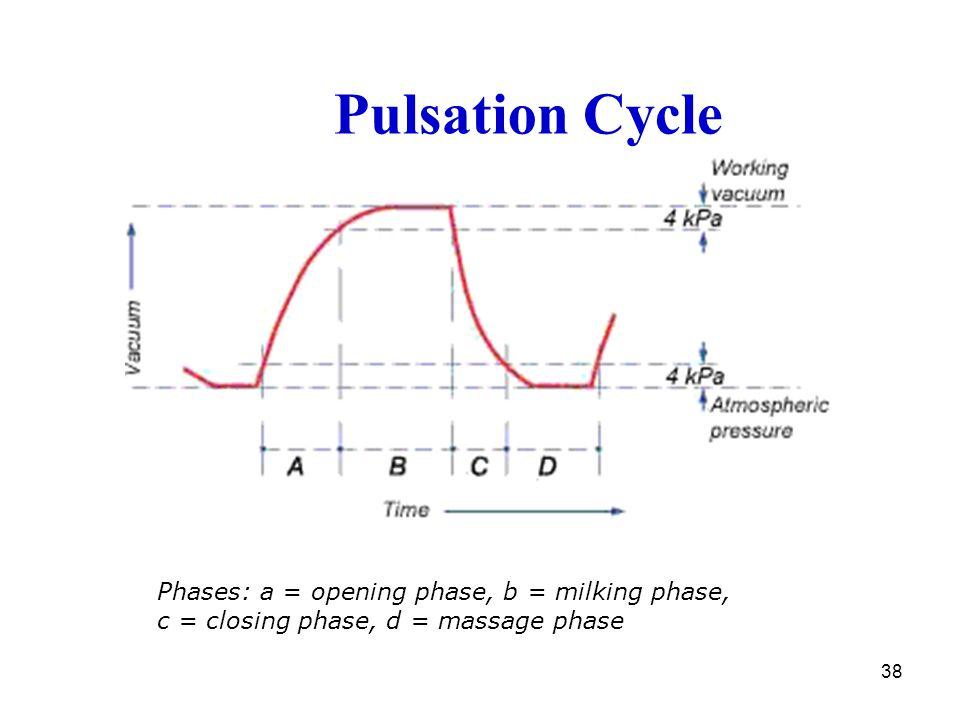 Pulsation Cycle Phases: a = opening phase, b = milking phase, c = closing phase, d = massage phase