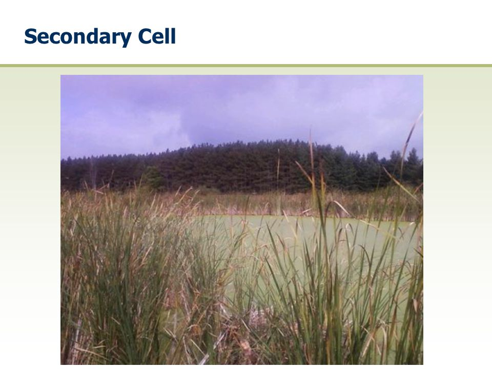 Secondary Cell