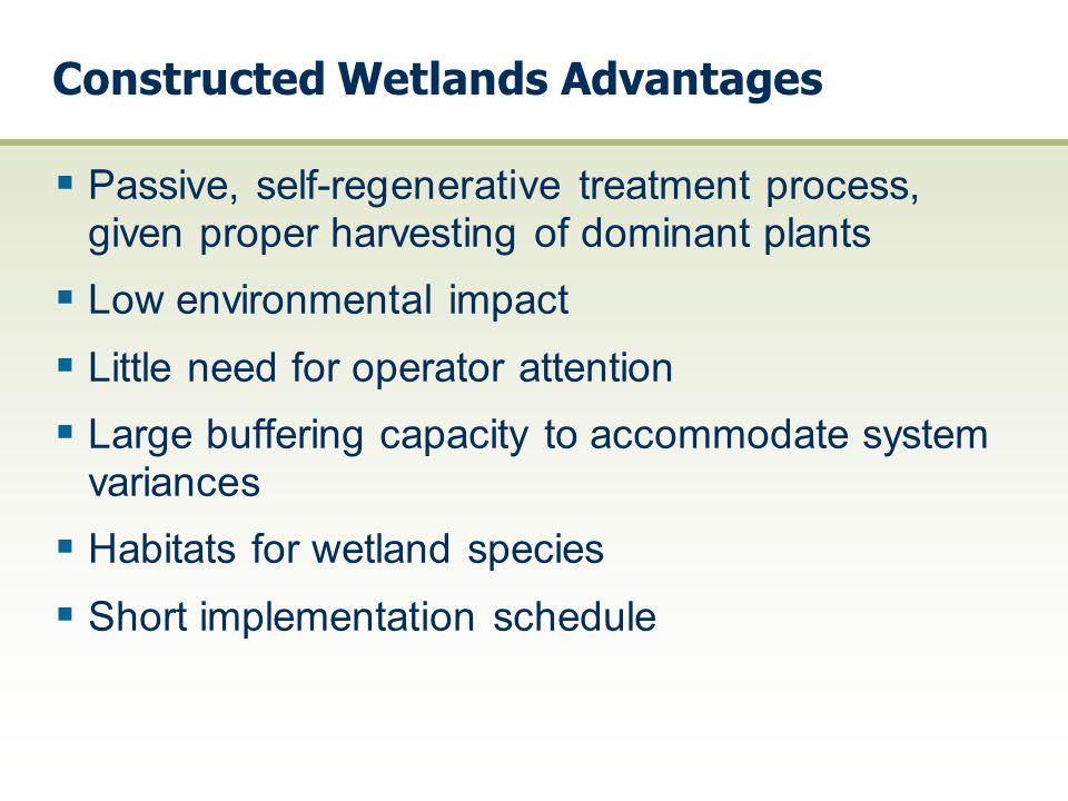 Constructed Wetlands Advantages