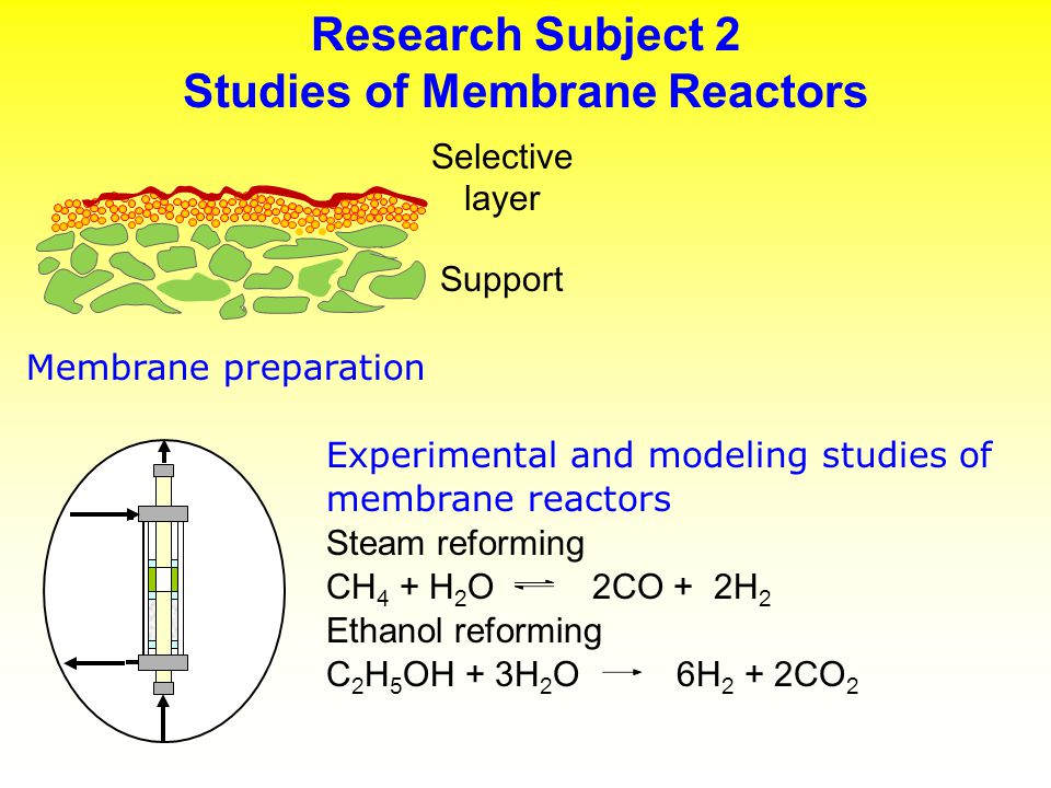 Research Subject 2 Studies of Membrane Reactors
