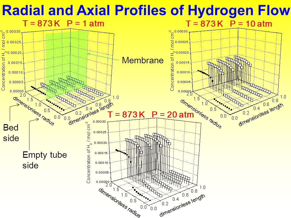 Radial and Axial Profiles of Hydrogen Flow