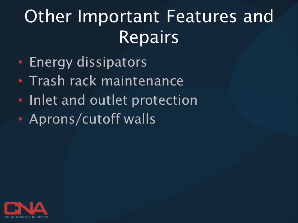 Other Important Features and Repairs