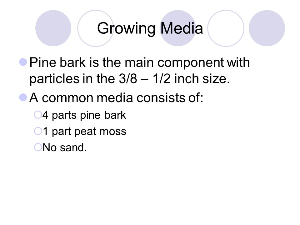 Growing Media Pine bark is the main component with particles in the 3/8 – 1/2 inch size. A common media consists of: