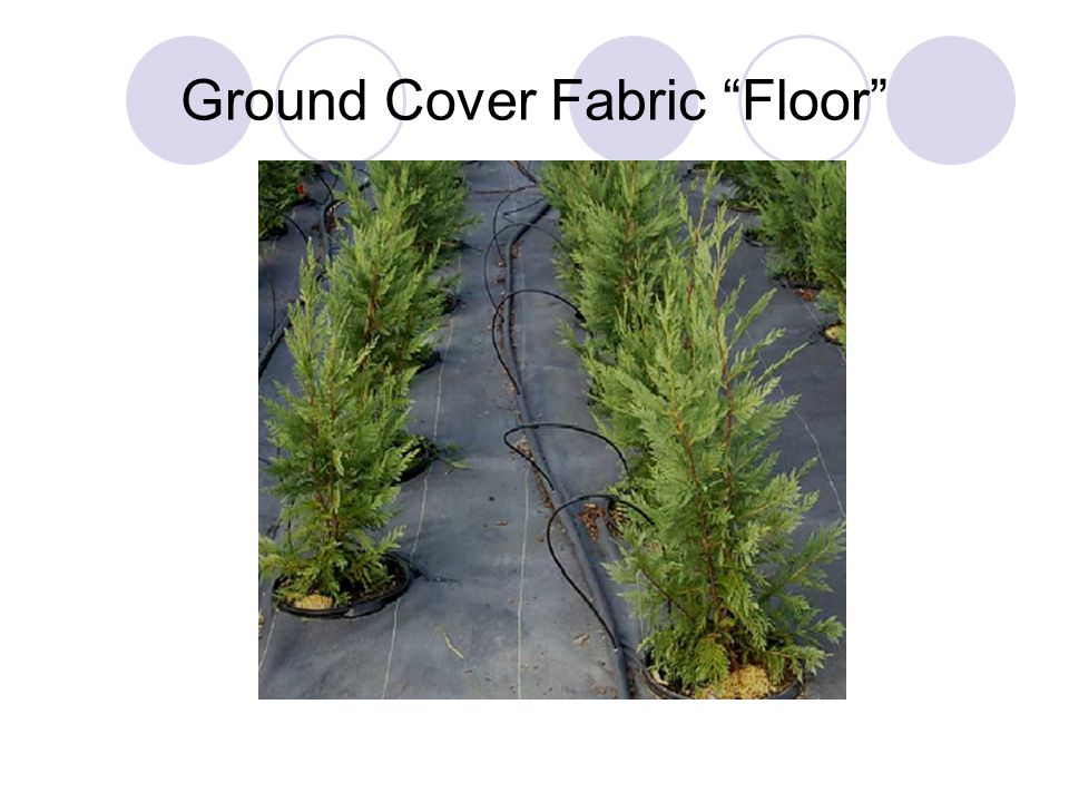 Ground Cover Fabric Floor