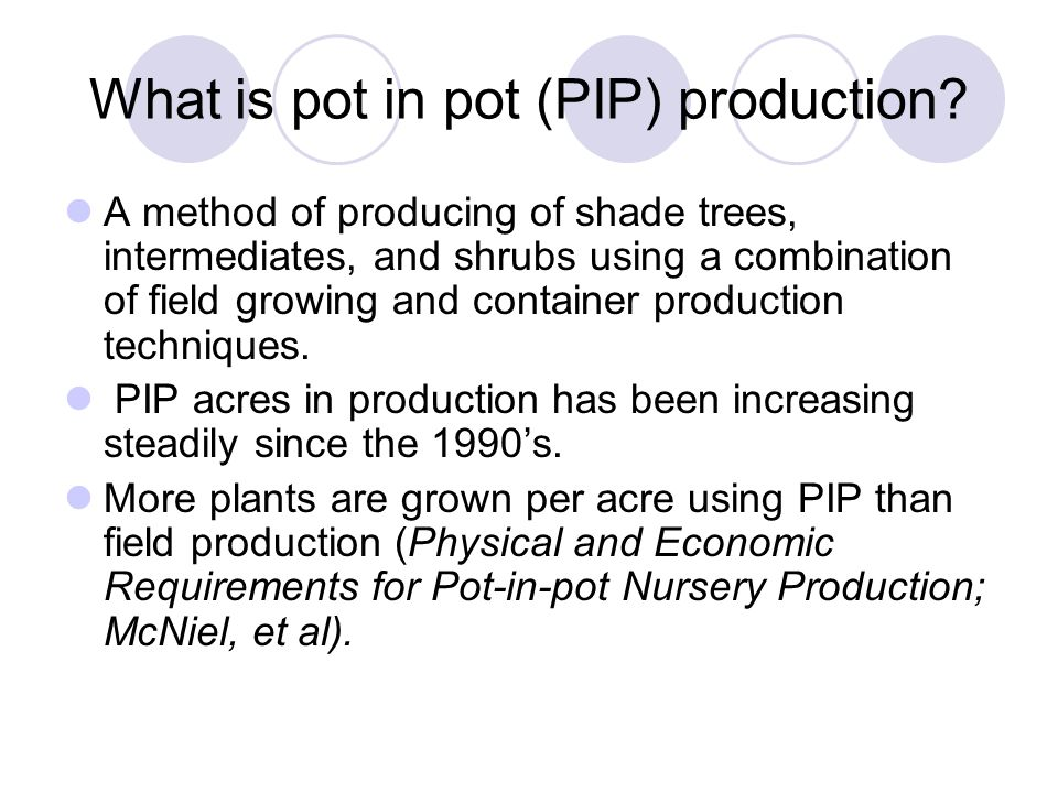 What is pot in pot (PIP) production