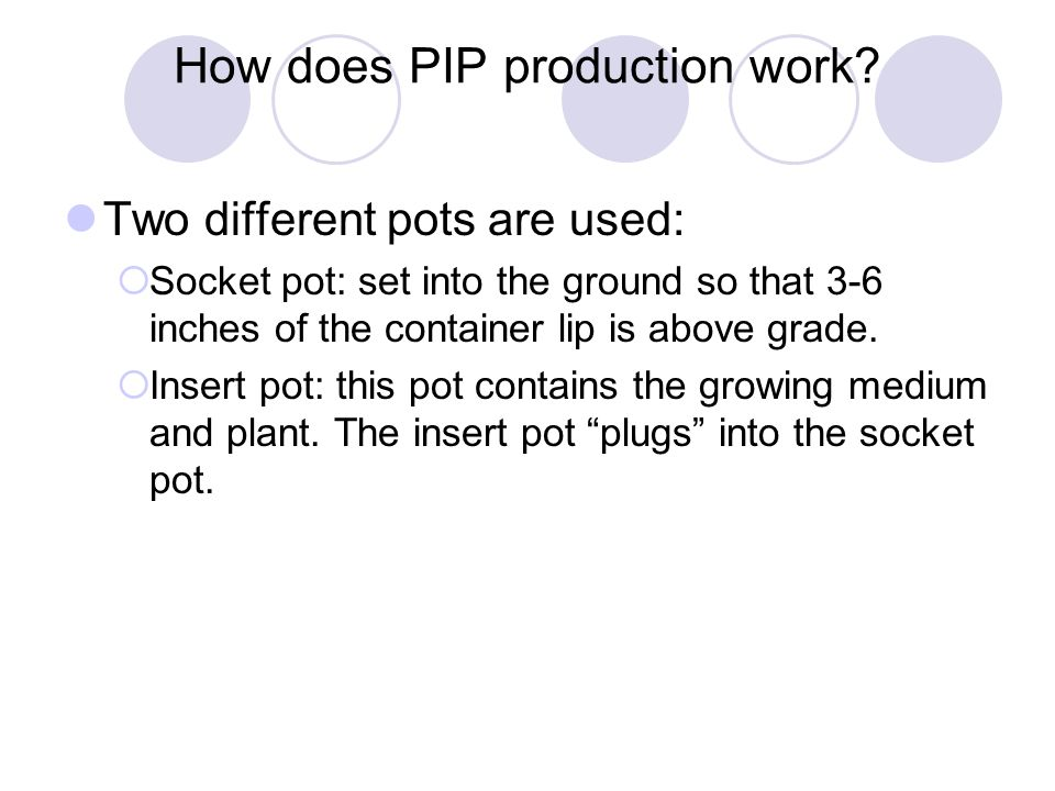 How does PIP production work