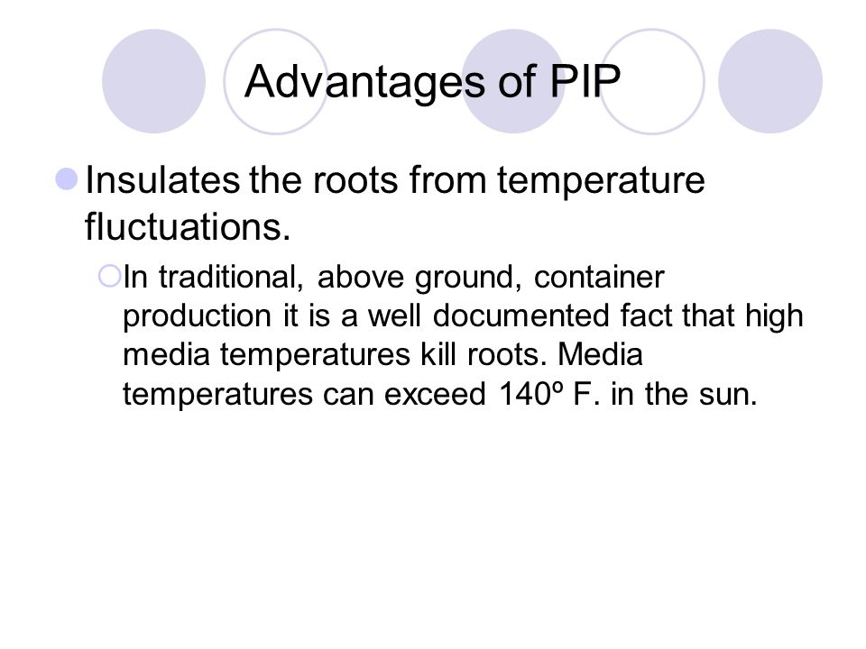 Advantages of PIP Insulates the roots from temperature fluctuations.