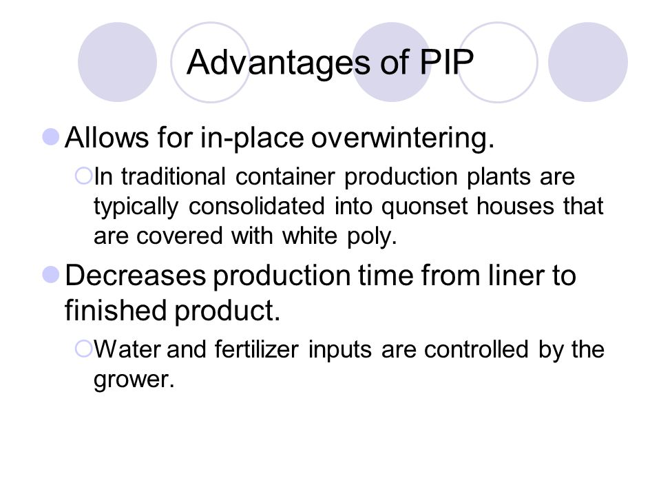 Advantages of PIP Allows for in-place overwintering.