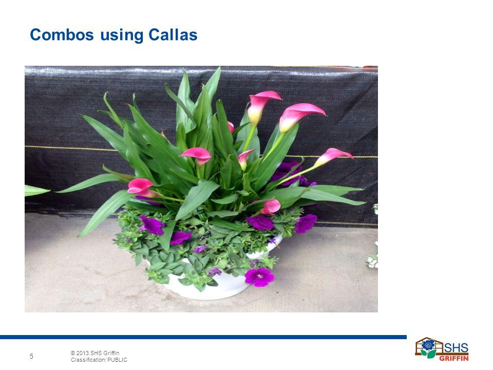 Combos using Callas