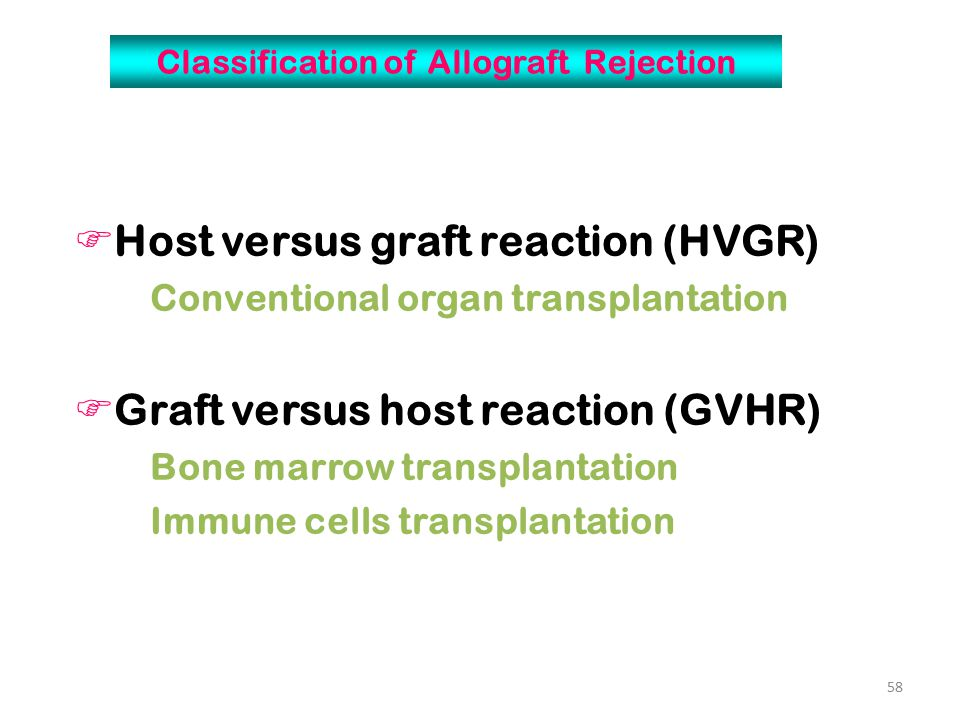 Classification of Allograft Rejection