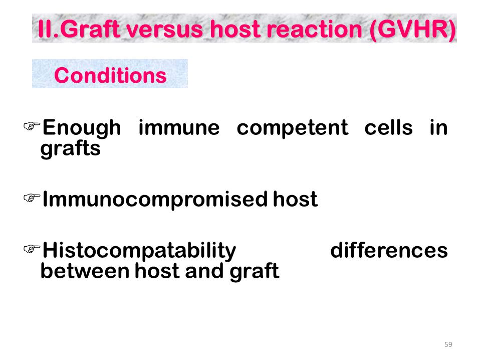 II.Graft versus host reaction (GVHR)