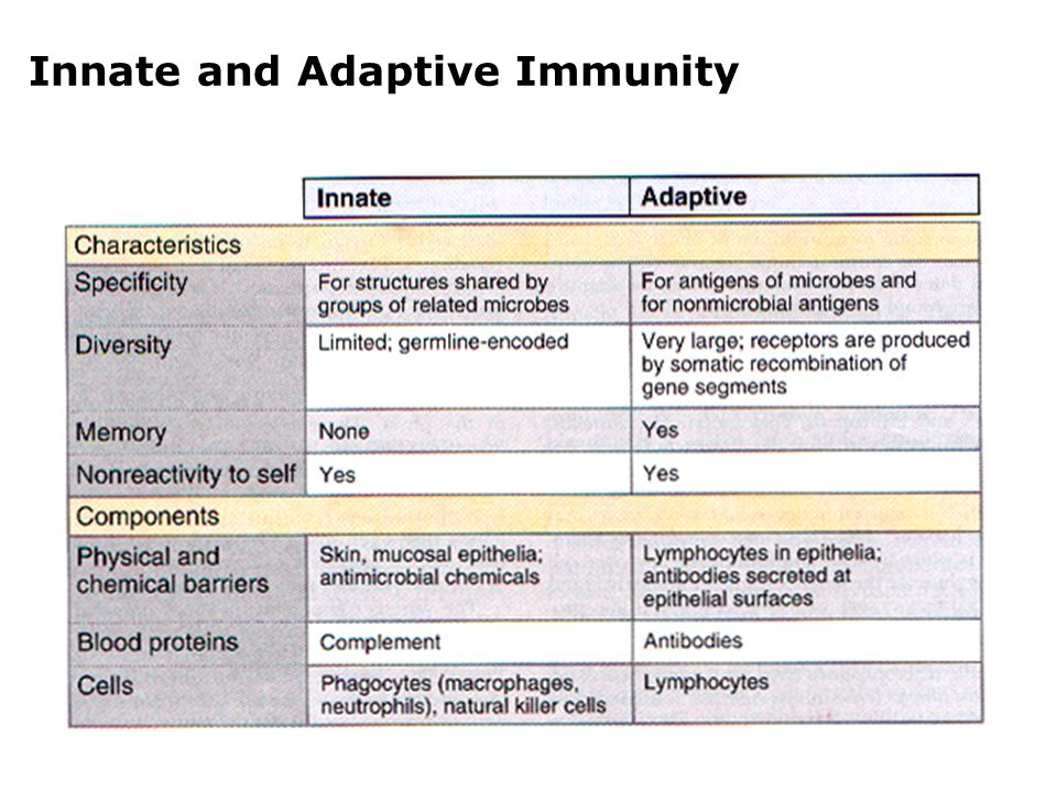 compare and contrast innate and adaptive immunity essay This is the stage where cell-mediated immunity with its mechanisms starts to work we compare in the adaptive immune system, humoral immunity is responsible for.