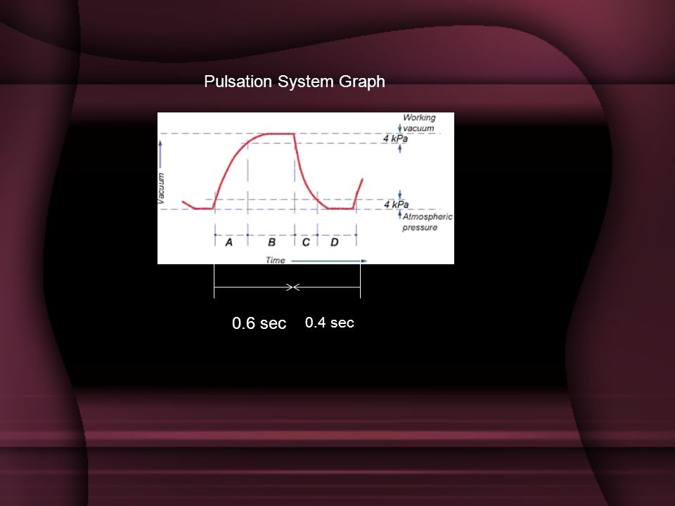 Pulsation System Graph