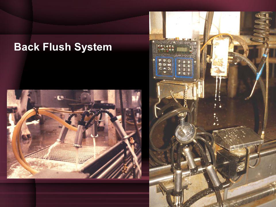Back Flush System