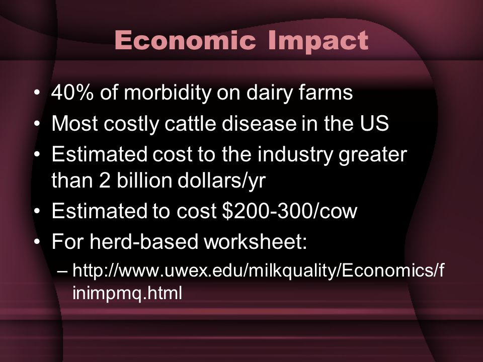 Economic Impact 40% of morbidity on dairy farms