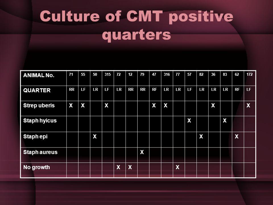 Culture of CMT positive quarters