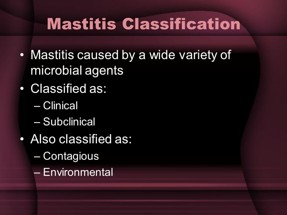 Mastitis Classification