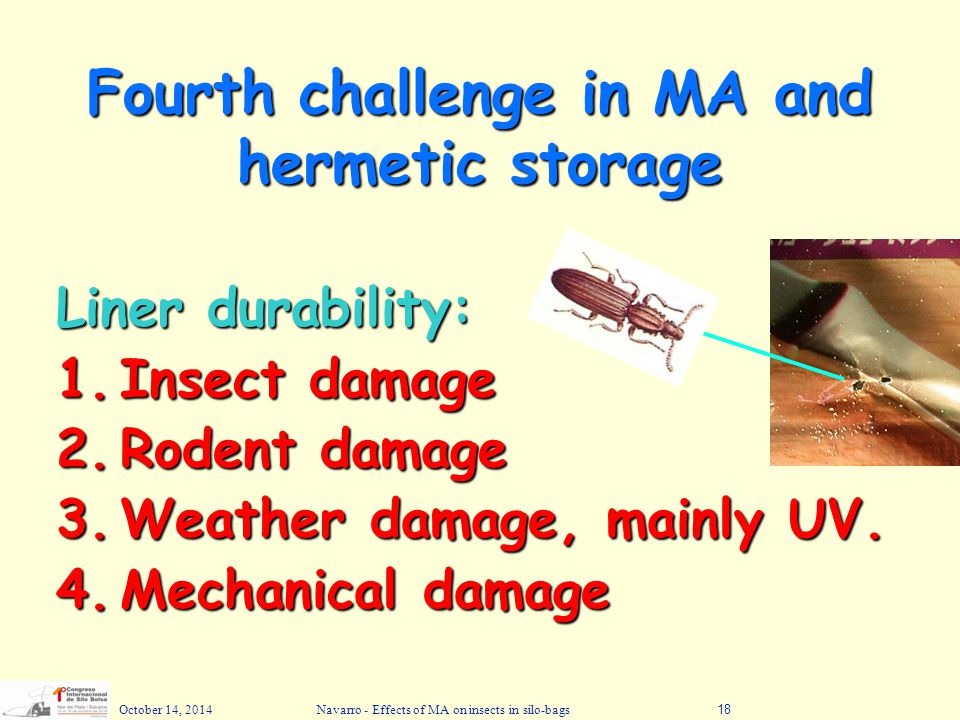 Fourth challenge in MA and hermetic storage