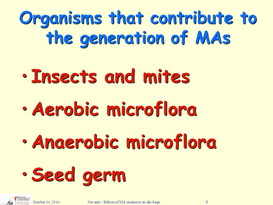 Organisms that contribute to the generation of MAs
