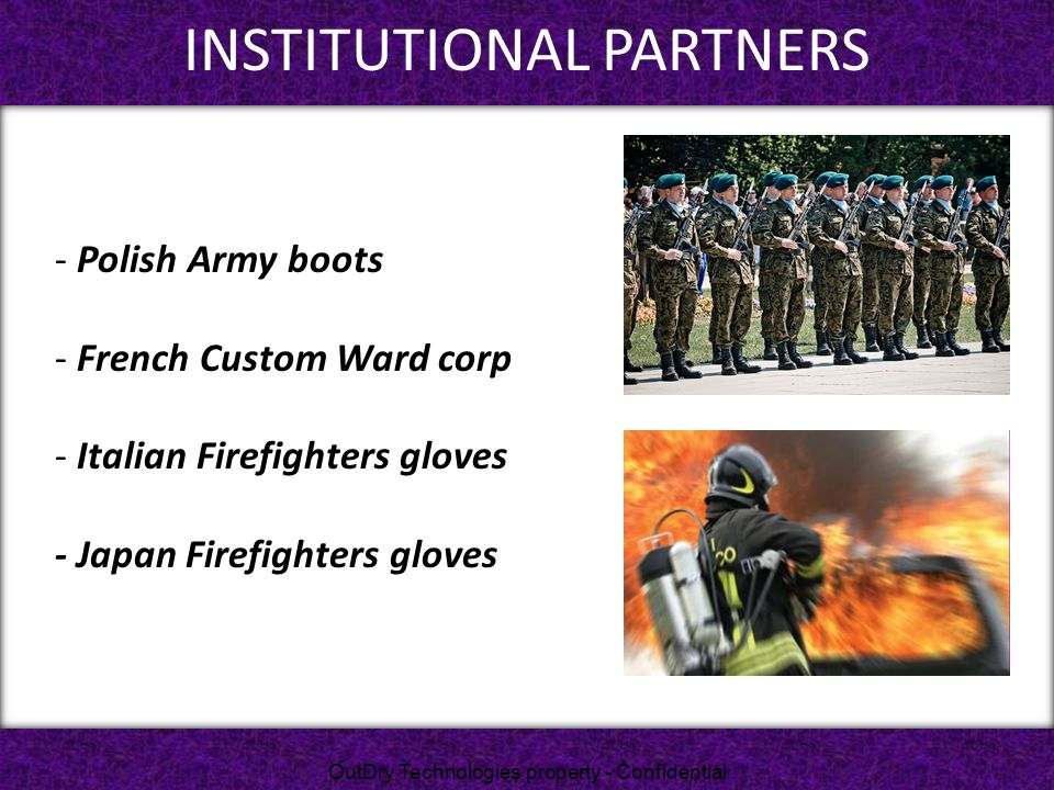 INSTITUTIONAL PARTNERS