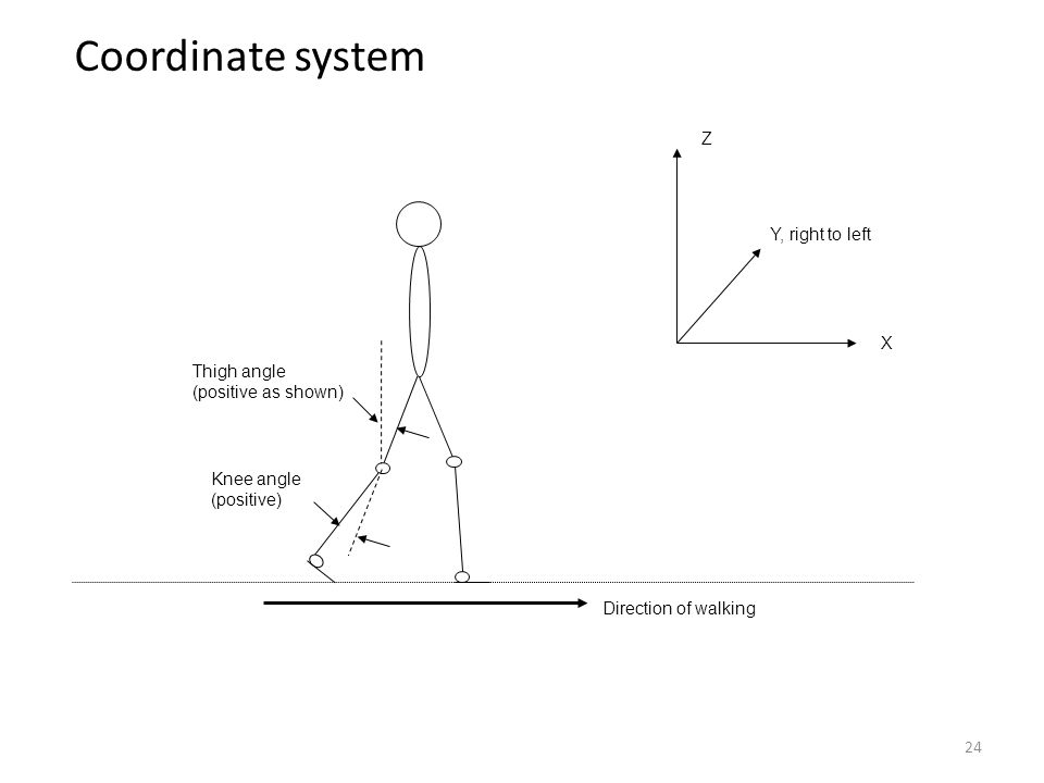 Coordinate system Z Y, right to left X Thigh angle (positive as shown)