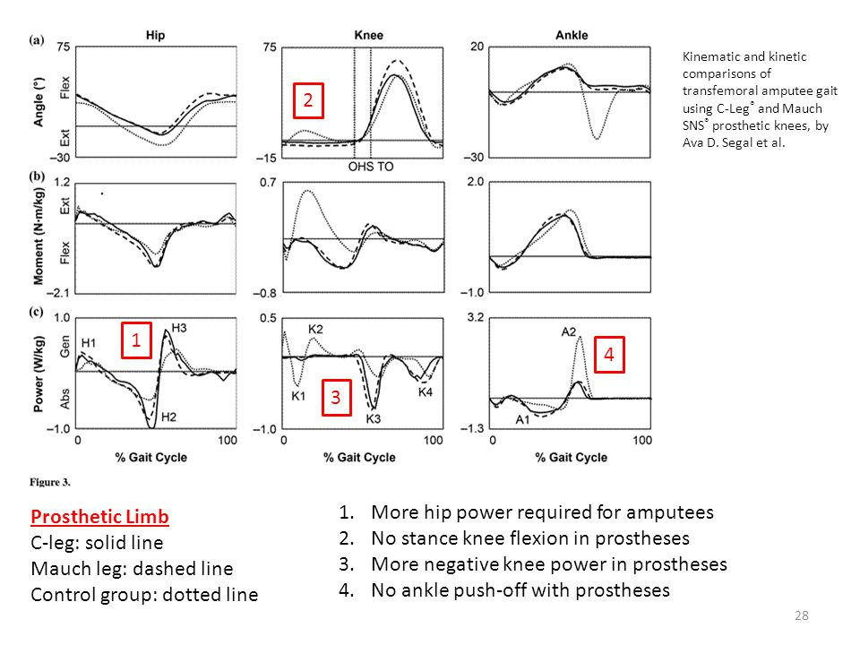 Control group: dotted line More hip power required for amputees