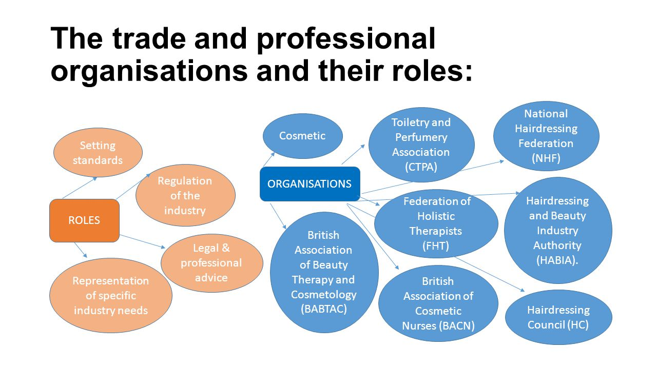 The trade and professional organisations and their roles: