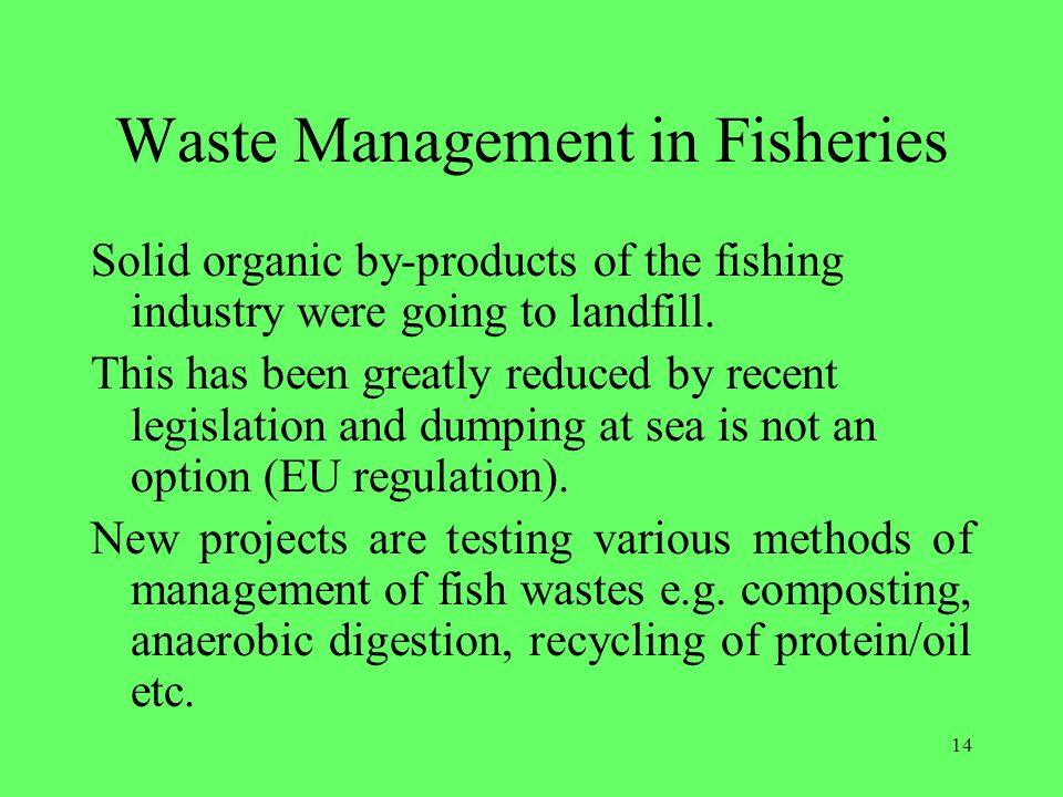 Waste Management in Fisheries