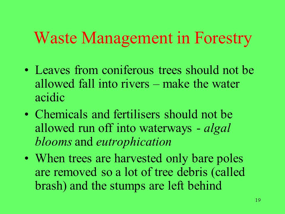 Waste Management in Forestry
