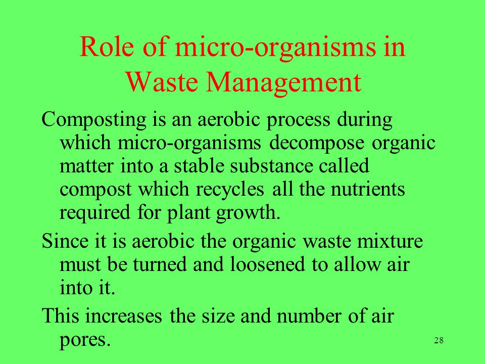 Role of micro-organisms in Waste Management