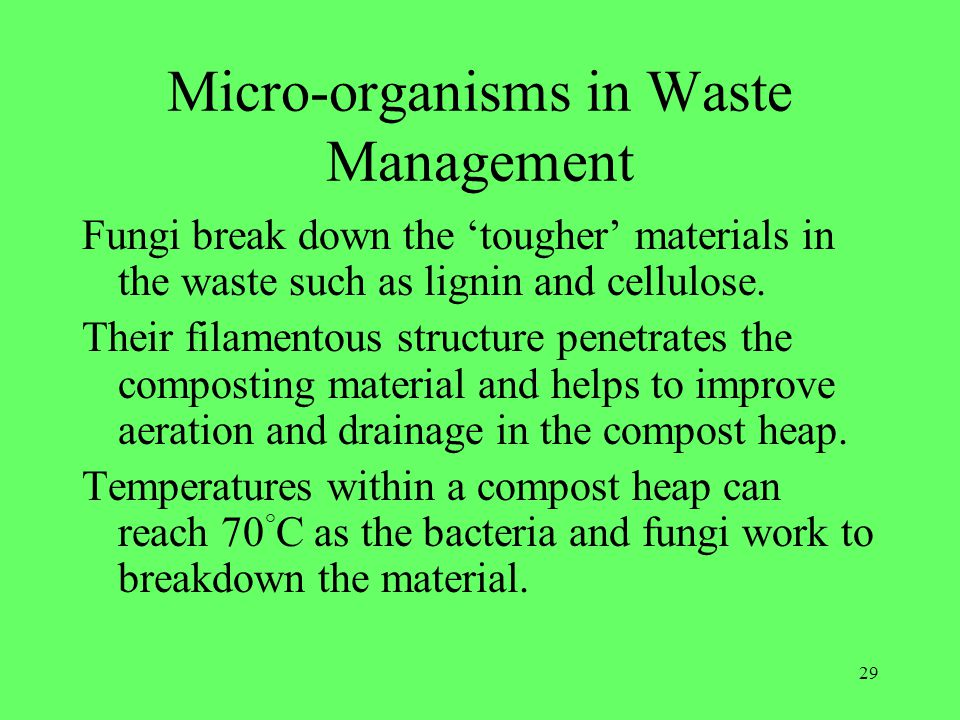 Micro-organisms in Waste Management