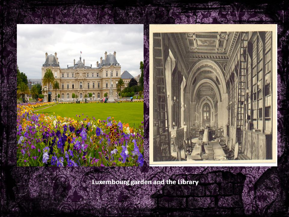 Luxembourg garden and the Library