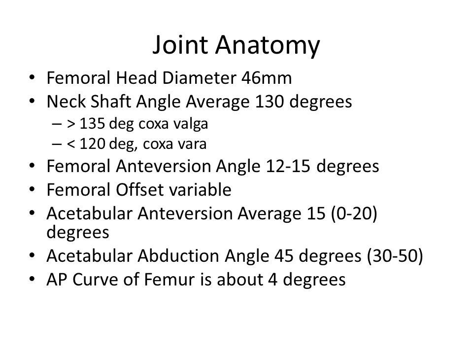 Joint Anatomy Femoral Head Diameter 46mm