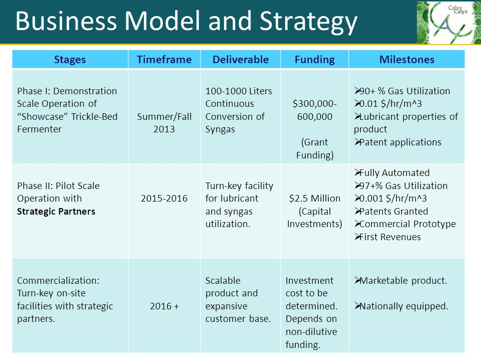 Business Model and Strategy