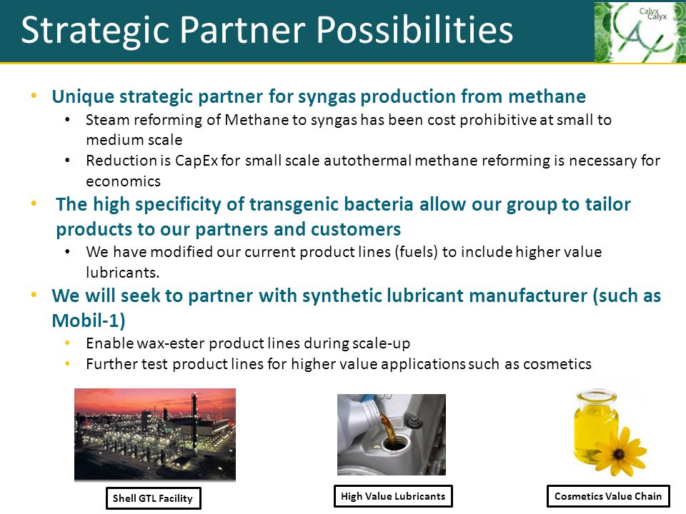 Strategic Partner Possibilities