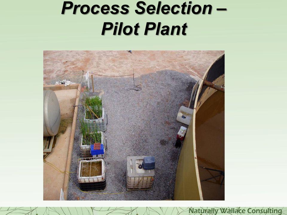 Process Selection – Pilot Plant