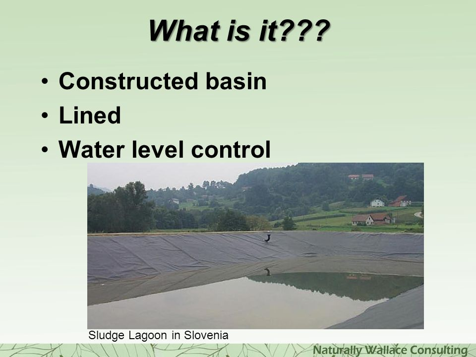 What is it Constructed basin Lined Water level control