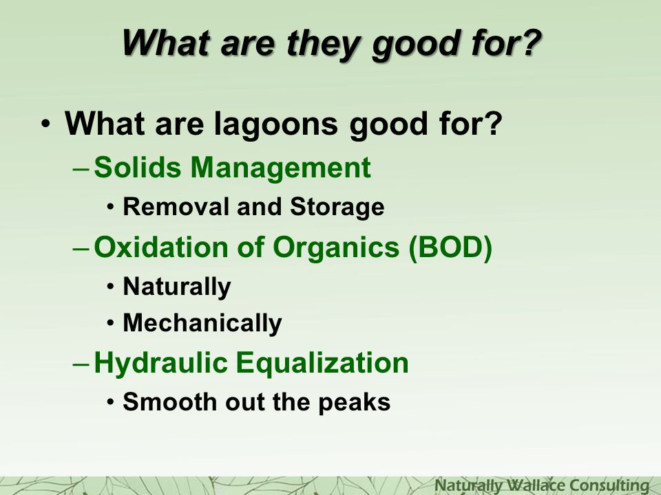 What are they good for What are lagoons good for Solids Management