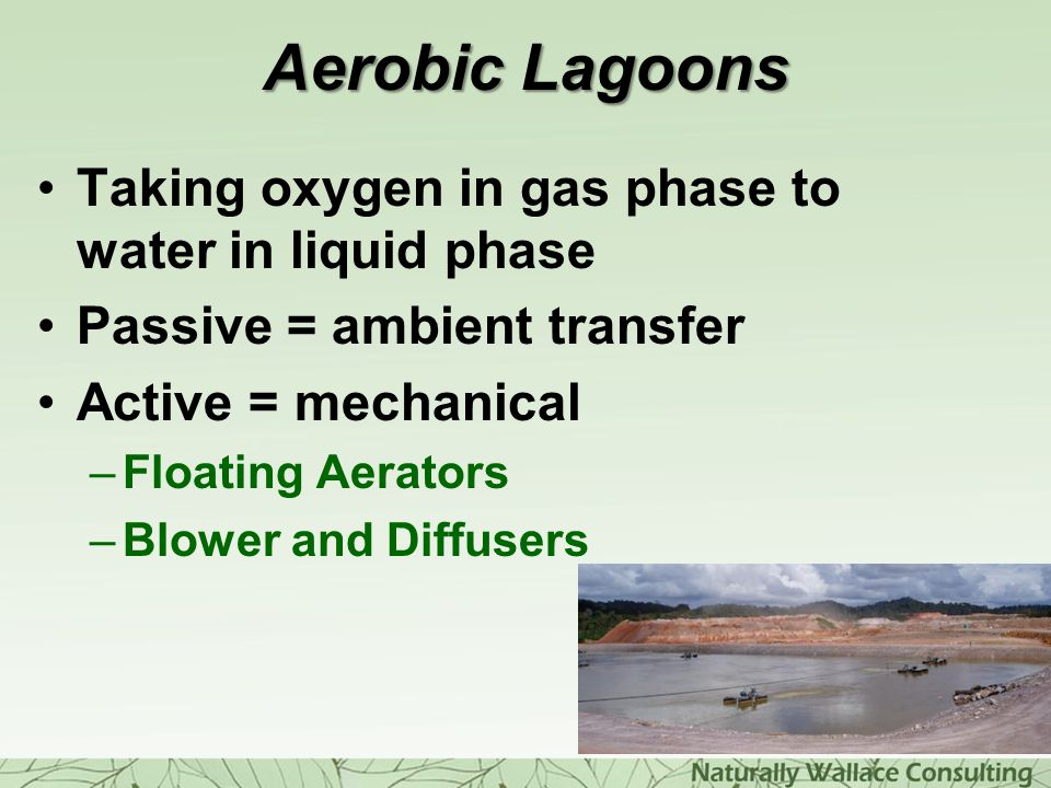 Aerobic Lagoons Taking oxygen in gas phase to water in liquid phase