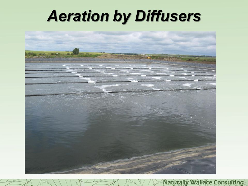 Aeration by Diffusers