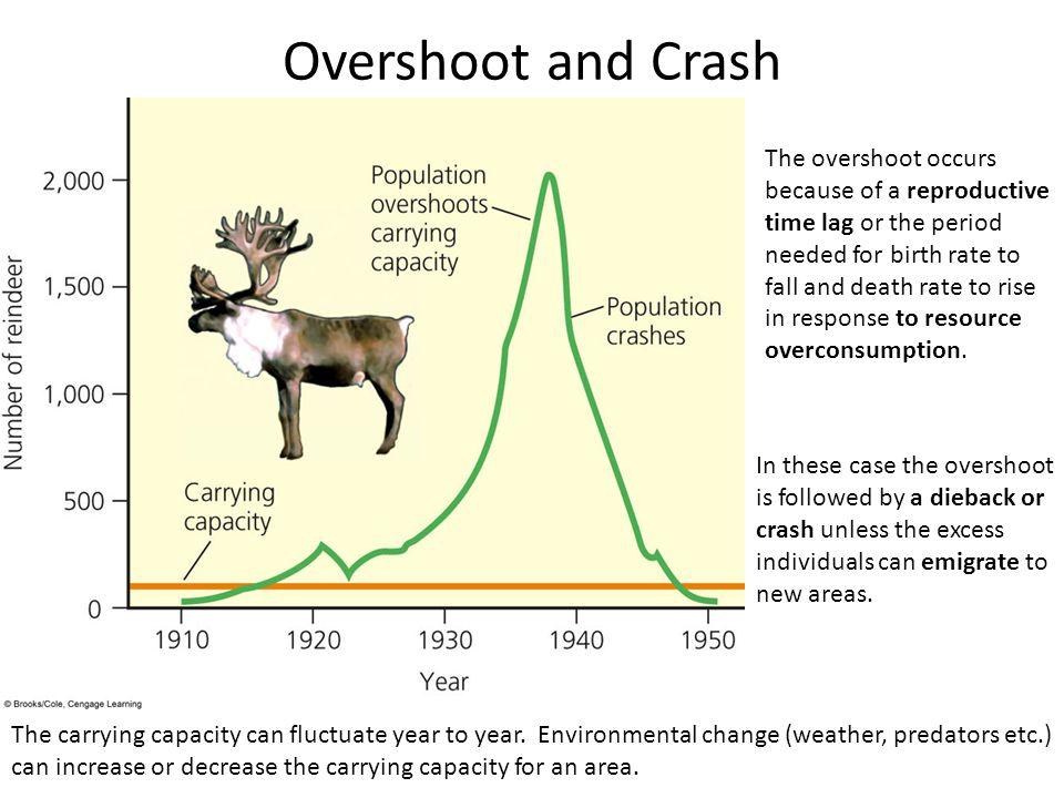 Overshoot and Crash