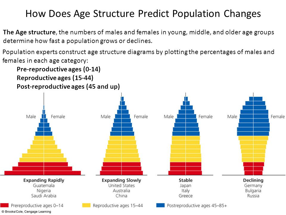 How Does Age Structure Predict Population Changes