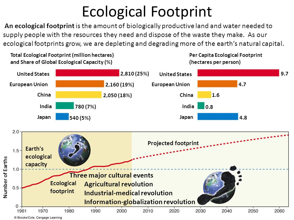ecological footprint Start studying ecological footprint learn vocabulary, terms, and more with flashcards, games, and other study tools.