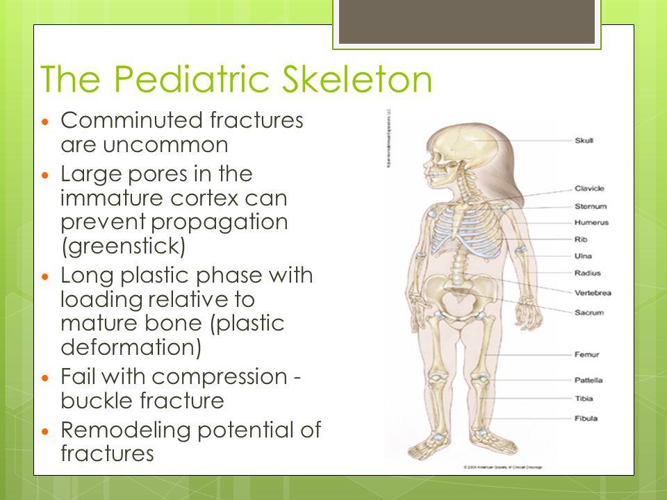 The Pediatric Skeleton