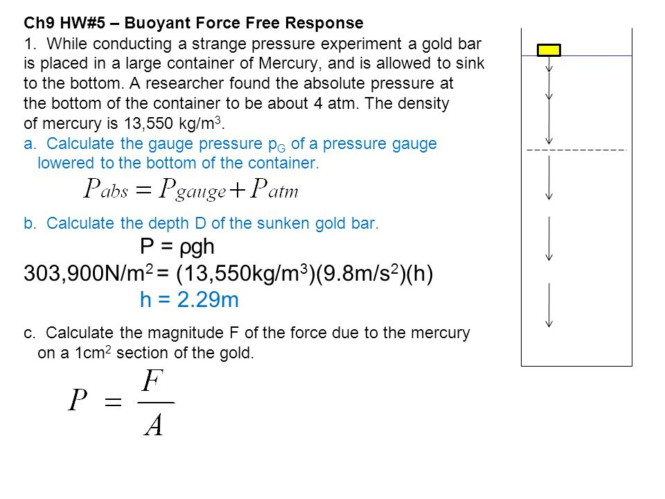 Ch9 HW#5 – Buoyant Force Free Response