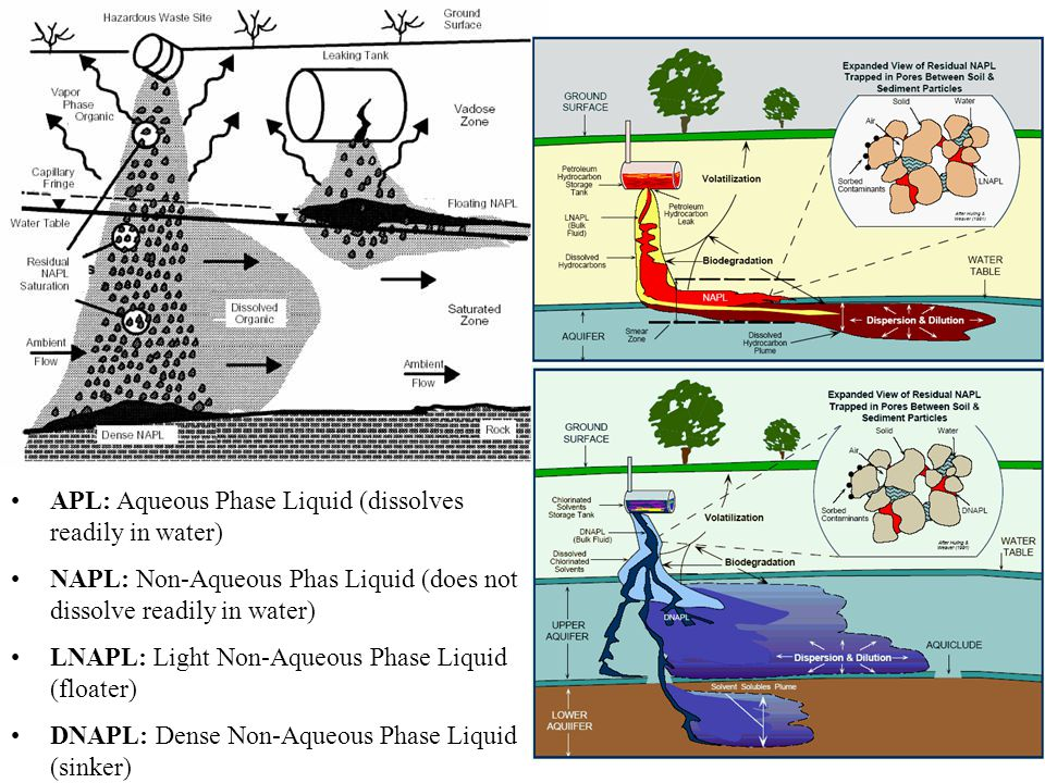 APL: Aqueous Phase Liquid (dissolves readily in water)